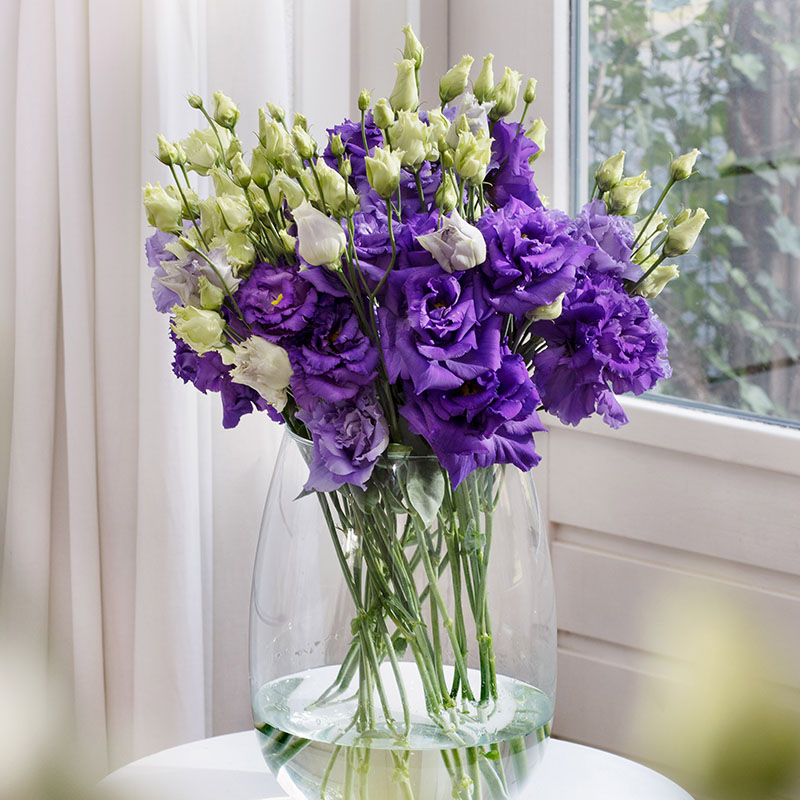 Lisianthus - The Special Flower